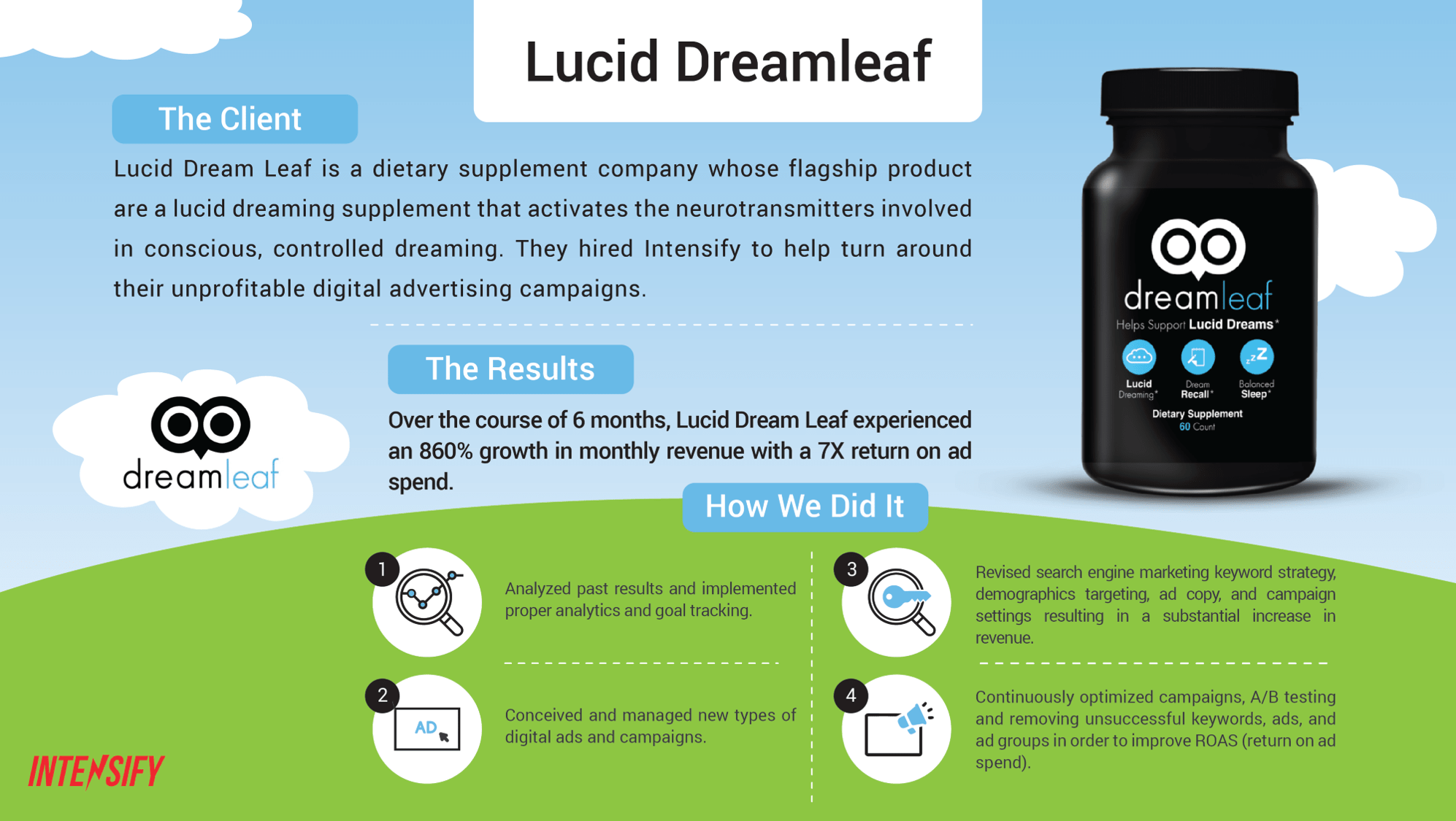 Lucid Dream Leaf - Ecommerce Case Study